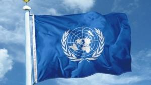 FN-flagga[1]